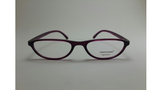 Optical Frame Model No.309
