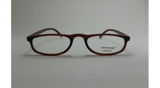 Optical Frame Model No.310