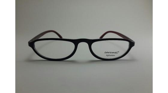 Optical Frame Model No.312