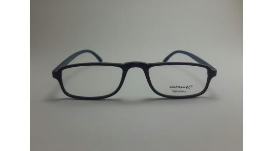 Optical Frame Model No.313