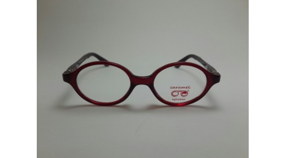 Optical Frame Model No. 208